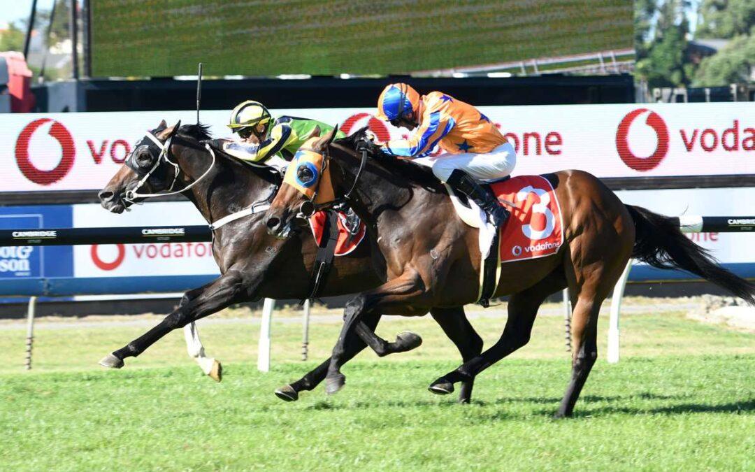Crown Prosecutor wins New Zealand Derby