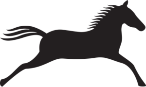 horse-icon-lg-300x179