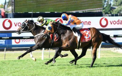 Crown Prosecutor wins New Zealand Derby
